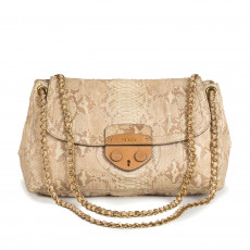 Prada Python Delave Chainlink Shoulder Bag 09
