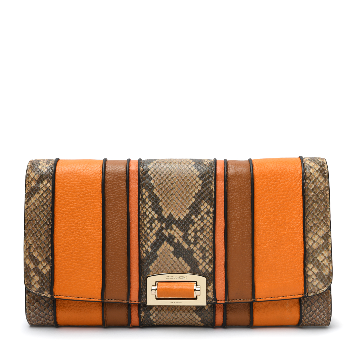 Coach Madison Pinnacle Exotic Stripe leather Clutch  01